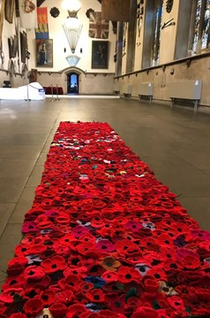 Poppy knitted launches kent the royal british legion dover town hall was the setting for the knitted poppy display being launched today in dover the stunning maison dieu was a beautiful backdrop to the mightylinksfo
