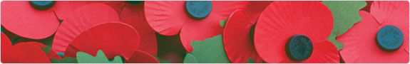 Poppies - the symbol of Remembrance